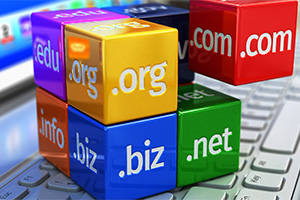 domain names orange county ny